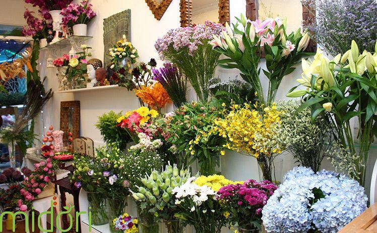 Shop hoa tươi Đường Nguyễn Trãi TP.Cao Lãnh