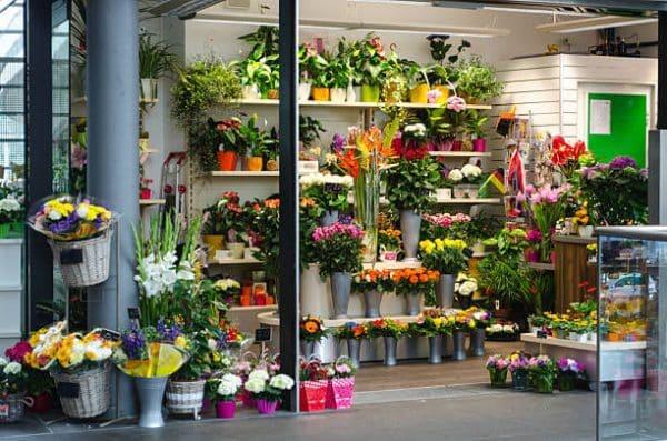Shop hoa tươi Đại lộ Hùng Vương Sa Đéc